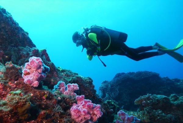 Plongee Poseidon Etang Sale