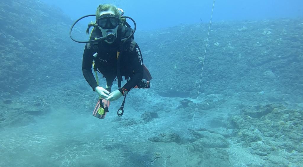 formation plongee